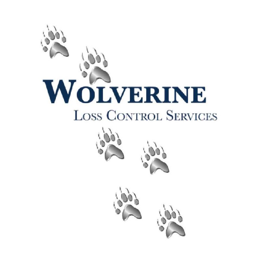 Wolverine Graphic cropped - Risk Management